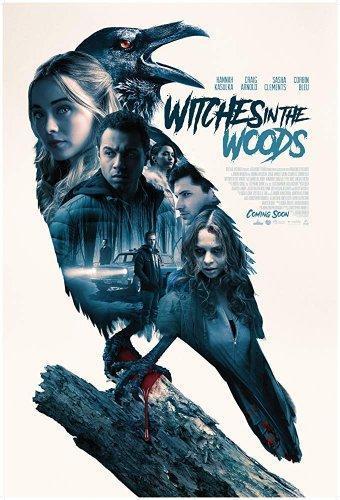 Ведьмы в лесу (2019)