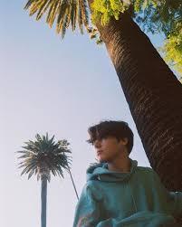 Ник и нефритовое дерево (2020)